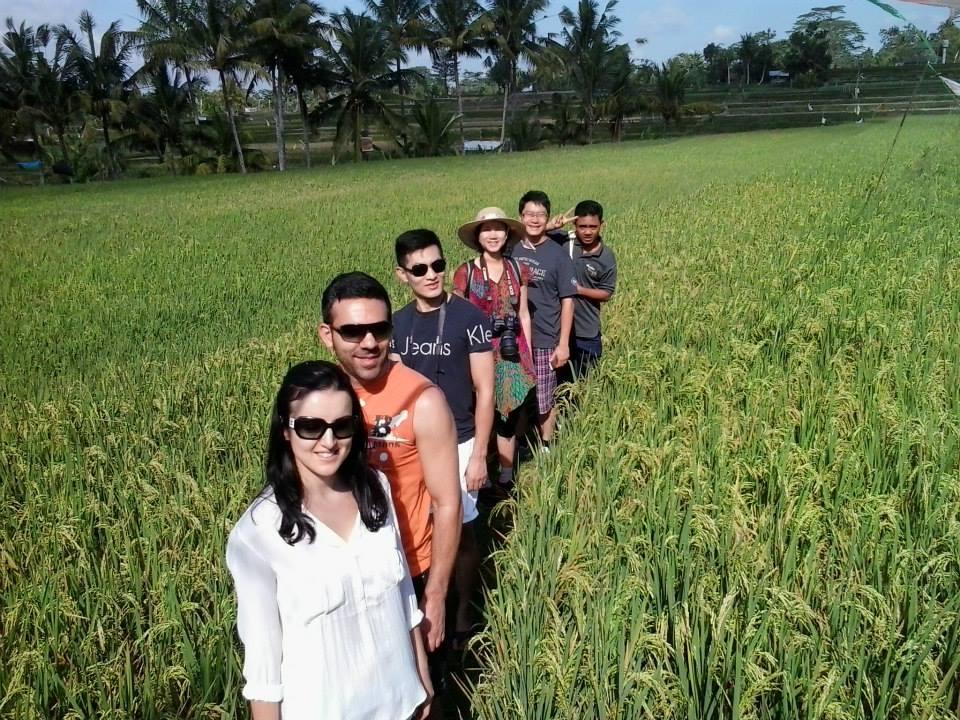 rice padies trecking 3